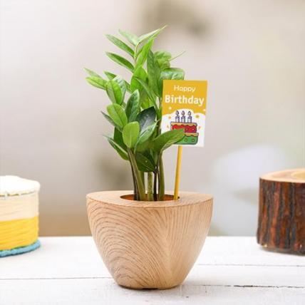 Happy ZZ Plant for Birthday Wishes